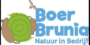 Boer Brunia